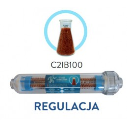 """Wkład liniowy 2"""" bioceramiczny 100 GW1/4"""" - C2IB100"""