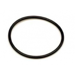 O-ring klosza Cintropur (NW18/25/32)