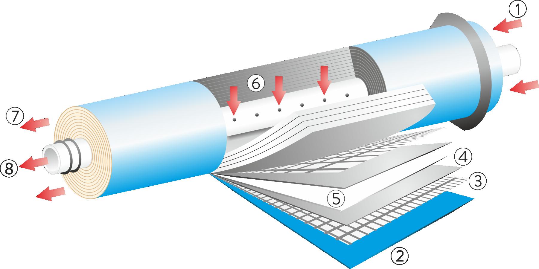 membrana - schemat.png